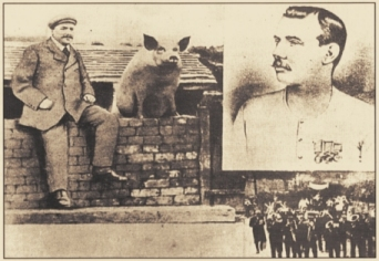 Dawley Pig on the wall postcard